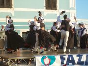Fažanski tanac 2012 048
